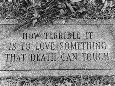 Viviendo al otro lado del espejo: How terrible it is to love something that death ca...