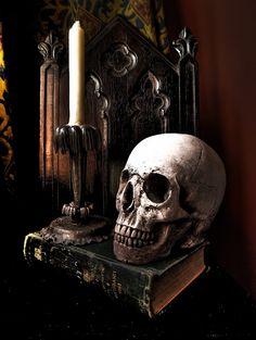 Gothic Still Life Gothic Room, Gothic Home Decor, Gothic House, Dark Gothic, Gothic Art, Victorian Gothic, Memento Mori, Wicca, Crane
