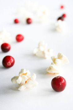 Cranberry and Popcorn Christmas Tree Garland, DIY Old-Fashioned Cranberry Popcorn Garland, How to Make a Cranberry and Popcorn Christmas Tree Garland, Salty Canary Christmas Projects, Holiday Crafts, Holiday Recipes, Christmas Holidays, Xmas, Merry Berry, Christmas Tree Garland, Homemade Gifts, Diy Crafts