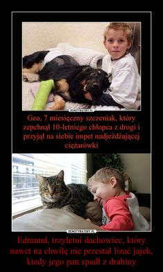 Best Memes, Funny Memes, Love You, My Love, Pet Adoption, Cute Animals, Humor, How To Plan, Magick