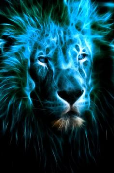 Is that you Aslan! Aslan represents Jesus Christ, according to the author, C. Witch is true Lion Tigre, Roaring Lion, Lion Wallpaper, Prophetic Art, Leo Lion, Fire Art, Lion Of Judah, Fractal Art, Fractal Images