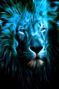 LION.....strength, beauty, calm energy