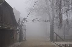 """A foggy day at Auschwitz this morning. The main gate to the camp with the """"Arbeit macht frei"""" sign."""