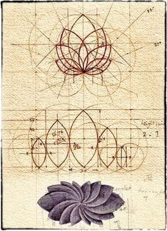 Geometry vesica petals drawing by unellenu Geometric Designs, Geometric Shapes, Geometric Flower, Sacred Geometry Art, Geometry Tattoo, Geometry Pattern, Poster Design, Crop Circles, Flower Of Life