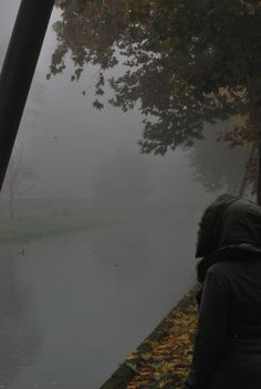 -Nebbia