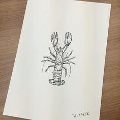 · Lobster · Design · Illust · 바닷가재 일러스트 도안 · 펜일러스트 · #illust #tattoo #바닷가재 #wonseok #tattooist #pastel #tattoos #lobster #pen #geometrytattoo #watercolor #illustration #minitattoo #동물타투 #라인타투 #타투도안 #도안 #미니타투 #대학로 #타투이스트원석 #geomtry #일러스트 #rinetattoo #파스텔타투 #혜화역 #홍대타투 #가재타투 #성신여대 #수채화타투