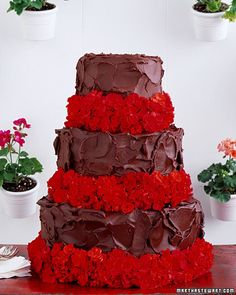 yummy simple chocolate cake with bright red flowers