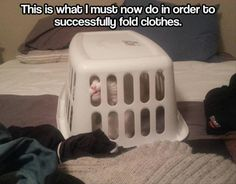Funny Pictures Of The Day – 72 Pics