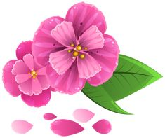 Manzanilla clipart png pinterest pink flower with petals png clipart image mightylinksfo Image collections