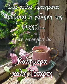 Good Morning Good Night, Wish, Dance, Dancing