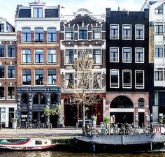The Amsterdam Guide