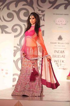 Archana kochhar Indian Wedding Dress    lovely combination...
