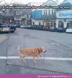 I Can Walk Myself, Thank You. Haha I died:)