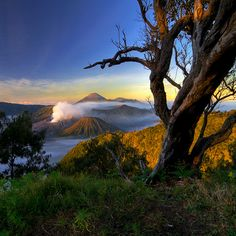 Majestic Bromo mountain, East Java. Indonesia's natural beauty. #bromo #java #indonesia