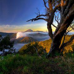 Majestic Bromo mountain, East Java. Indonesia's natural beauty. #bromo #java #indonesia