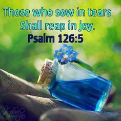 Psalm 126:5 ~ Those who sow in tears shall reap in joy...