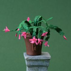 This Christmas (or Thanksgiving) cactus is only one inch tall, and it looks just like the real one in my living room. This is made from paper.