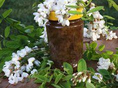 CAIETUL CU RETETE: Dulceata din flori de salcam