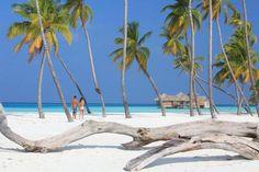 $ 1,215/Night Soneva Gili by #SixSenses #Oceanfront #Resort. Lankanfushi, #Male #Atoll, #Maldives. http://VIPsAccess.com/luxury-hotels-maldives.html