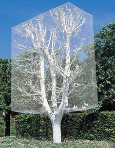 aviary' parc de saint cloud, france (1997)--installation, white tree with white birds in a cage