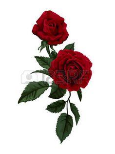 Fleur rose rouge rose rouge meilland fleur pinterest roses et rouge - Dessin de rose rouge ...