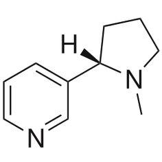 La nicotine est une molécule simple capable de se fixer dans le corps, dans le cerveau, et sur des récepteurs. Elle est la principale cause de la dépendance tabagique. Il est possible de fabriquer de la nicotine, mais le produit de synthèse n'a pas les mêmes propriétés que la nicotine naturelle. Il est donc plus simple d'extraire la nicotine que de la synthétiser.