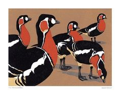 'Red Breasted Geese' by Robert Gillmor (A437)