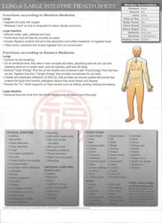 Health sheet Lung/Large Intestine. Contact Information http://www.kup4u.com/company/infinityflexibility http://infinityflexibility.com/wp/