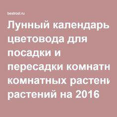 Календарь 1994 года православный календарь