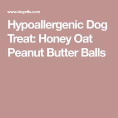 Hypoallergenic Dog Treat: Honey Oat Peanut Butter Balls