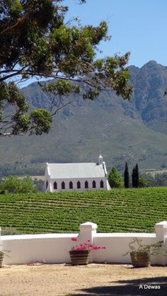Tulbach a small village in the wine lands area of the Boland Area Cape Dutch, Dutch House, Cape Town, Wine Tasting, Small Towns, South Africa, Mystic, To Go, Rest