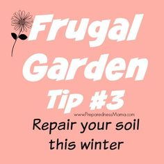 7 easy ways to repair soil in your garden this winter. From adding compost to learning Back to Eden mulching, you can have better soil and healthier plants.