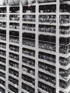 Construction workers building the World Trade Center