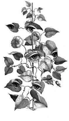 Paula Braconnot's Monochromatic Collages - Occult art - Gravure Illustration, Art Et Illustration, Vintage Illustrations, Engraving Illustration, Art Inspo, Tattoo Drawings, Art Drawings, Pencil Drawings, Art Du Croquis