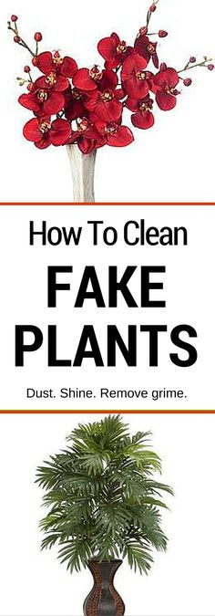 Knowing how to clean fake plants, whether they're plastic or silk, will help preserve their beauty while reducing dust and allergens in your home. Here's how.