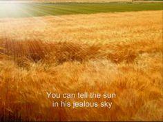 Eva Cassidy - Fields of Gold lyrics - YouTube