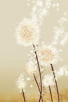 Dandelion Wishes ~