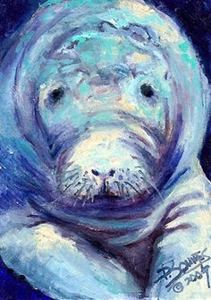 Squires Limited Edition Signed Print - Endangered Manatee