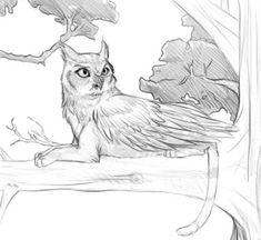 Owl griffin by Ashpri