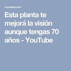 Esta planta te mejorá la visión aunque tengas 70 años - YouTube