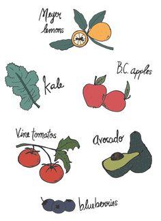 Fruits and veggies via www.kaylaenglish.ca #illustration