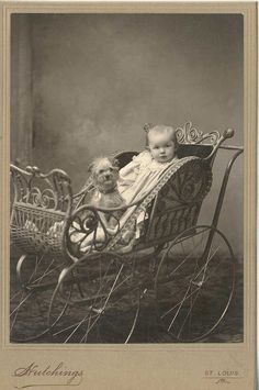 ~+~+~ Antique Photograph ~+~+~  Adorable baby and pup in a carriage  c. 1890