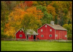 Hale Farm & Village is nuzzled within a gorgeous setting of Cuyahoga Valley National Park. Farm Village, Photo Location, Senior Pictures, Day Trips, Homesteading, Ohio, National Parks, Places To Visit, Cabin