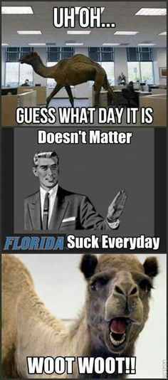 Florida sucks everyday