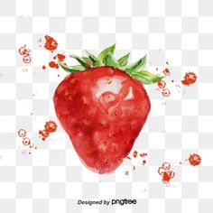 Strawberry Flower, Download, Flowers, Fruit Hand Pies, Air Balloon, Floral Watercolor, How To Draw Hands, Watercolour, Vectors
