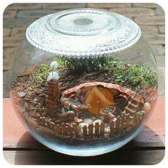 Sam's Hobbit Hole Fairy Garden terrarium
