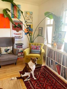 Dog sitting by shelf holding records Two Bedroom Apartments, Apartment Living, Apartment Therapy, Inside Magazine, Kilim Fabric, Hanging Posters, Ikea Cabinets, I Cant Sleep, Pattern Mixing