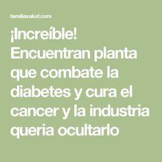 ¡Increíble! Encuentran planta que combate la diabetes y cura el cancer y la industria queria ocultarlo