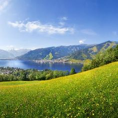 Looking for somewhere different to go on holiday this year? Bored of the same style of poolside holiday? Then Austria might be for you. Austria Holidays, Zell Am See, Going On Holiday, To Go, Images, Nature, Mountains, Travel, Outdoor