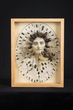 -Laurent Gauthier-  *Boites à insectes.  'Hommage'  (technique mixte. 2014)